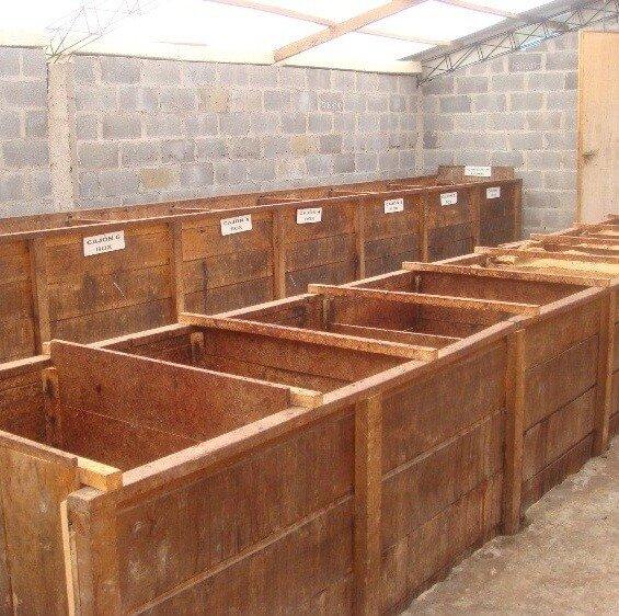 Caixa de fermentação de cacau